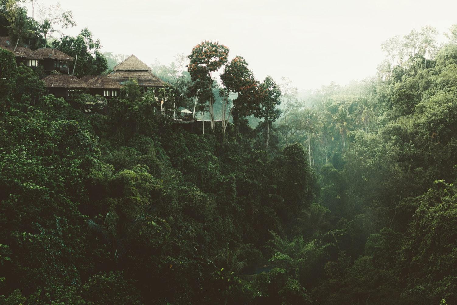 Luxury Vacation Rental in Sri Lanka